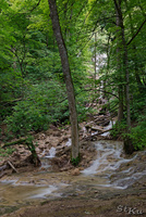 LAN_20130622_3301_1.JPG - Bad Urach
