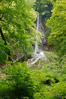LAN_20130622_3302_1.JPG - Bad Urach
