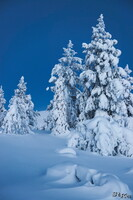 LAN_20150110_9155_1.JPG - Winter, Finnland