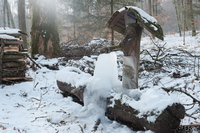 LAN_20170129_7830.JPG - Winter, Brunnen